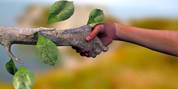 Cientistas lançam estudo sobre sustentabilidade no Brasil