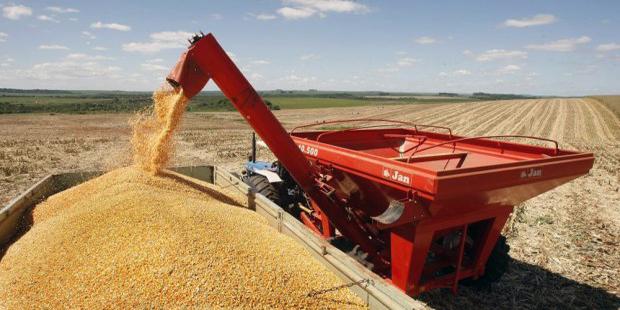Safra de grãos pode atingir 199,9 milhões de toneladas, estima Conab