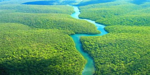 Indústria quer quebrar barreiras e explorar melhor a biodiversidade