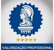 Confea_valorizao-profissional-2-faf09b85c1e1398932793310fcb226fd