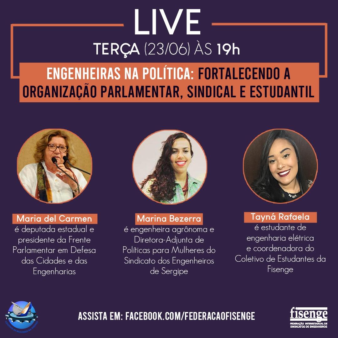 Engenheiras na política será tema de live da Fisenge nesta terça-feira